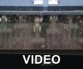 http://www.youtube.com/embed/HflFjObIxr0?rel=0